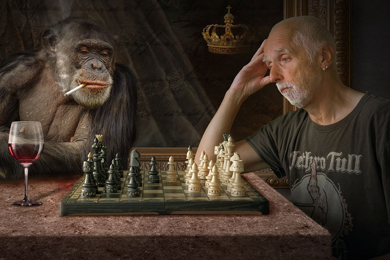 Chess duel of economic crisis with the economic stabilization